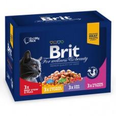 Влажный корм для кошек Brit Premium Cat pouch Семейная тарелка ассорти 4 вкуса 12x100 г
